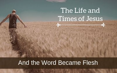 Sidebar Series - The Life and Times of Jesus
