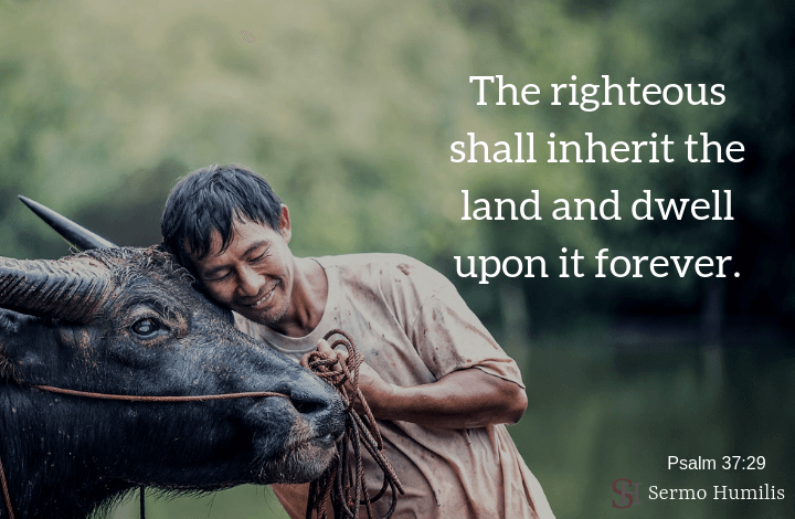 The righteous shall inherit the land - sermo humilis