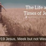 Jesus, Meek but not Weak