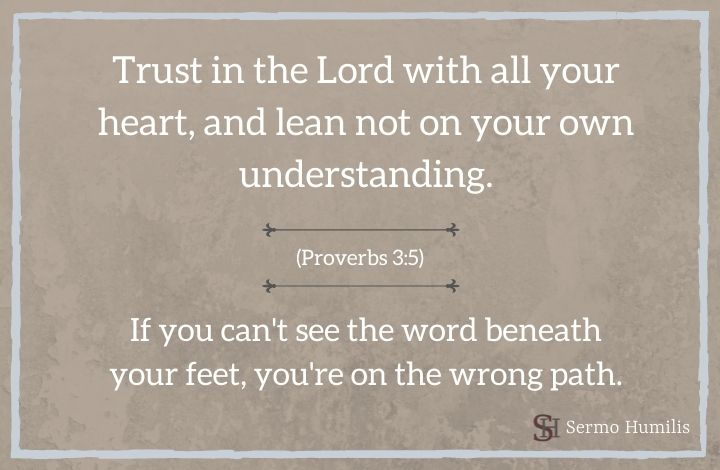 Straight Paths ~ Proverbs 3:5-6