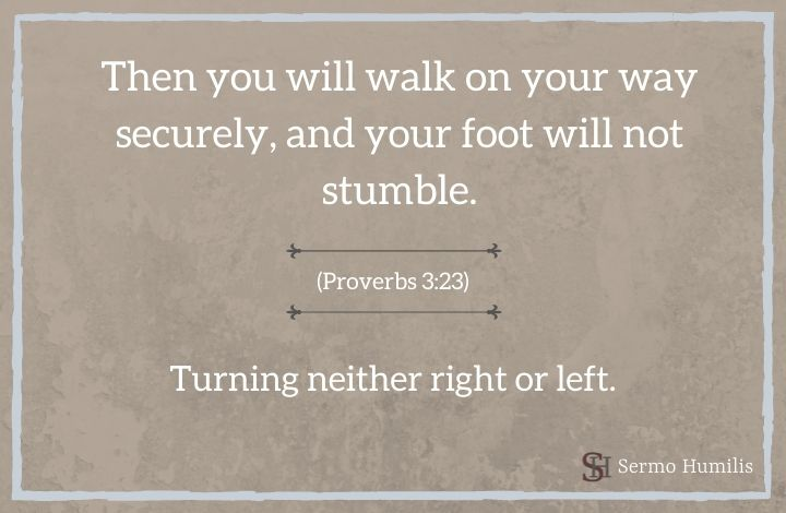 Turning Neither to the Right or Left _ Proverbs 3_23 - Sermo Humilis
