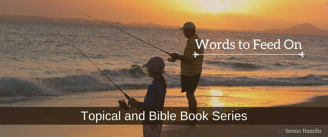 Bible book and topical series